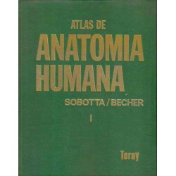 Atlas de Anatomía Humana.