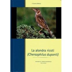 La alondra ricotí (Chersophilus duponti).