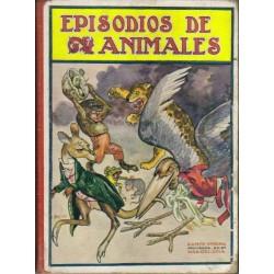 Episodios de animales
