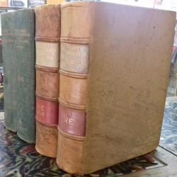 Diccionario crítico etimológico de la lengua castellana. 4 vols.